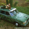 Green Goddess Art Car by Shelly Long