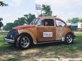 Stink Bug Art Car by Carolyn Stapelton